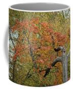 RUN Coffee Mug