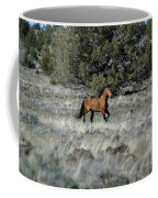Running Bachelor Stallion Coffee Mug