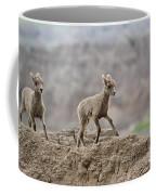 Running Wind Through The Badlands Coffee Mug