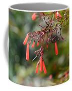 Russelia Aka Firecracker  Coffee Mug