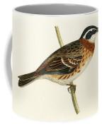 Rustic Bunting Coffee Mug