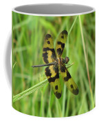 Ryothemis Dragonfly Coffee Mug