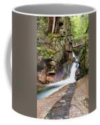 Sabbaday Falls Coffee Mug