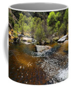 Sabino Creek Coffee Mug