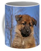Sable German Shepherd Puppy II Coffee Mug by Sandy Keeton