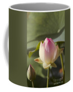 Sacred Lotus - Nelumbo Coffee Mug