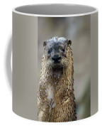 Sad Looking  Coffee Mug