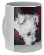 Sad Puppy Coffee Mug