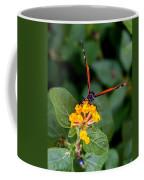 Safe Landing Coffee Mug
