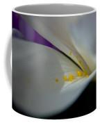 Safron Coffee Mug