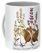 Sage, 1613 Coffee Mug