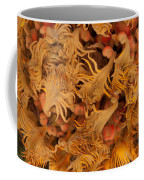 Sago Seeds Coffee Mug