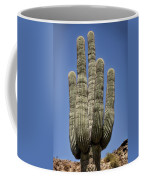 Saguaro 2 Coffee Mug