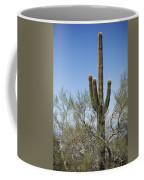 Saguaro 8 Coffee Mug