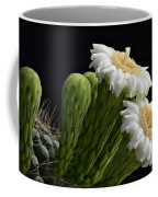 Saguaro Blooms  Coffee Mug