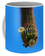 Saguaro Elephant Trunk Coffee Mug