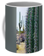 Saguaro National Park Portrait Coffee Mug