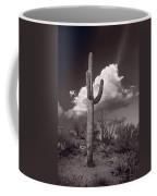 Saguaro Sunset Arizona Bw Coffee Mug
