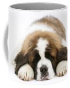Saint Bernard Puppy Sleeping Coffee Mug
