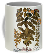 Saint-johns-wort, 1613 Coffee Mug
