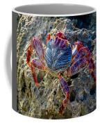 Sally Lightfoot Crab 1 Coffee Mug