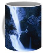 Salmon Creek Falls Coffee Mug
