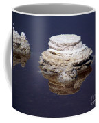 salt cristal at the Dead Sea Israel  Coffee Mug