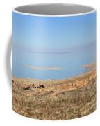 Salt Lake View Coffee Mug