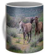 Salt River Wild Horses-img_747217 Coffee Mug