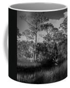 Salt Springs Coffee Mug