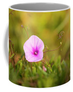 Saltmarsh Morning Glory Flower  Coffee Mug