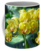 San Diego Yellow Orchids Coffee Mug