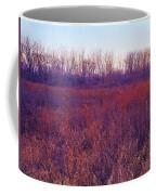 Sanctuary IIi. Coffee Mug