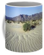 Sand Dunes & San Ysidro Mountains At El Coffee Mug