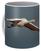 Sand Hill Crane On Approach Coffee Mug