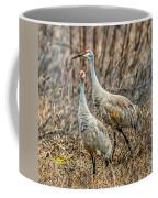 Sand Hill Crane Pair Coffee Mug