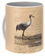 Sand Hill Cranes Coffee Mug