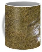 Sand Stars Coffee Mug