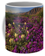 Sand Verbena Coyote Mountains Anza Borrego State Park California Coffee Mug