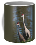 Sandhill Crane Couple By The Pond Coffee Mug