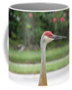 Sandhill Crane In Sarasota Coffee Mug