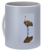Sandhill Crane Posing Coffee Mug