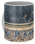 Sandhill Crane Series #3 Coffee Mug