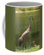 Sandhill Crane With Baby Chick Coffee Mug