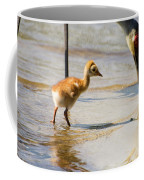 Sandhill Crane With Chick Coffee Mug