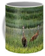 Sandhill Cranes II Coffee Mug