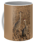 Sandhill Cranes On Watch Coffee Mug