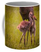 Sandhill Cranes Playing Coffee Mug