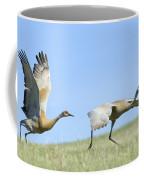 Sandhill Cranes Taking Flight Coffee Mug