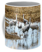 Sandhill Gang Coffee Mug